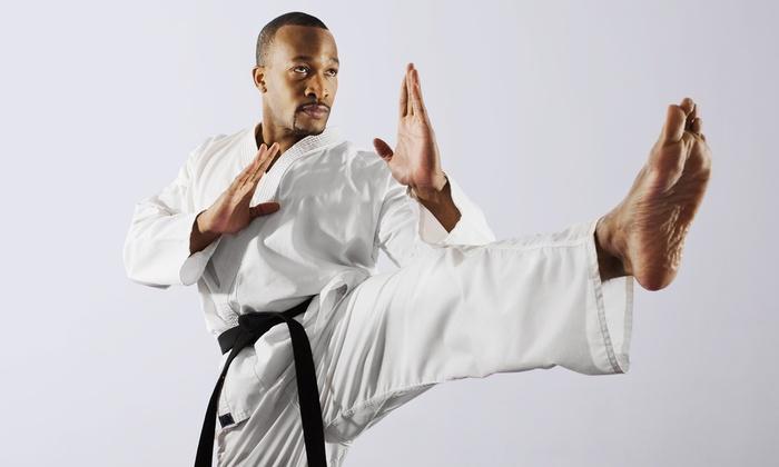 Manatee Kenpo Karate Studio - Palmetto: $15 for $30 Worth of Services at Manatee Kenpo Karate Studio