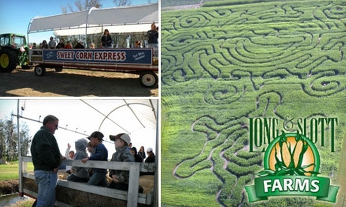 Long & Scott Farms - Tavares: $4 for One Youth Admission or $5 for One Adult Admission to the Corn Maze and Adventure Area at Long & Scott Farms