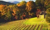 Montaluce Winery - Dahlonega: Winery Tour and Tasting for Two or Four at Montaluce Winery and Le Vigne Ristorante in Dahlonega (Up to 56% Off)