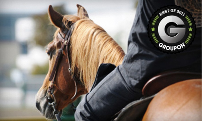 Vail Meadows Equestrian Center - Birmingham: Two Beginner Riding Lessons or a Weekend Overnight Horse Camp at Vail Meadows Equestrian Center (Up to Half Off)