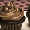 $7 for Cupcakes at Cupcake Craving