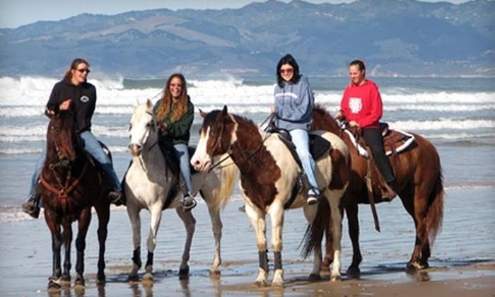 Half Off Horseback Ride At Pacific Dunes In Oceano