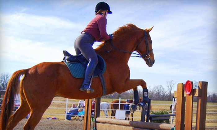 Whispering Winds Training Center - Quinlan: One, Three, or Five Horseback-Riding Lessons at Whispering Winds Training Center in West Quinlan (Up to 61% Off)