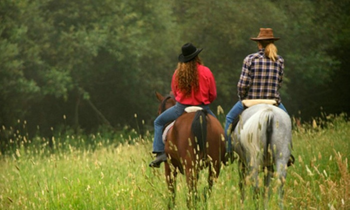Spring Valley Equestrian Center - Fredon: Horseback Riding or Private Lessons at Spring Valley Equestrian Center in Newton (Up to 65% Off). Four Options Available.