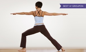 Dana Hot Yoga: 5 or 10 Hot-Yoga Classes or One Month of Unlimited Classes at Dana Hot Yoga (Up to 70% Off)