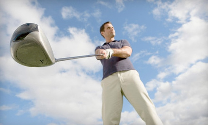 GrandRapidsGolfLesson. com - Westside Connection: $43 for Golf-Swing Analysis and Coaching Session from GrandRapidsGolfLesson.com ($100 Value)