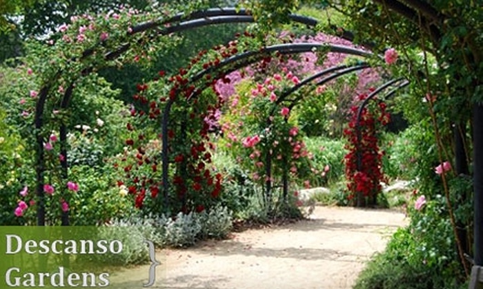 Descanso Gardens - La Canada Flintridge: $4 for Adult Admission (Up to $8 Value) or $14 for a One-Day Family Pass (Up to $34 Value) at Descanso Gardens in La Canada