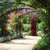 Up to 59% Off at Descanso Gardens