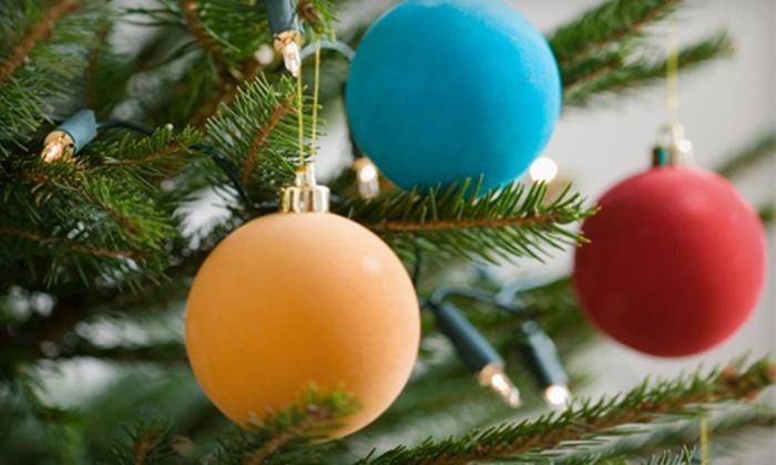 Sandhill Christmas Trees - Sandhill Christmas Trees: $25 for a 5- to -6-Foot Christmas Tree from Sandhill Christmas Trees in Oak Park ($55 Value)