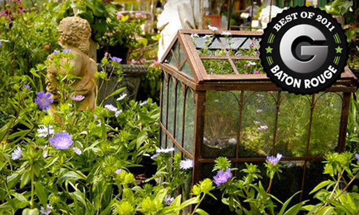 Harb's Oasis - Baton Rouge: $15 for $30 Worth of Plants & Gardening Supplies at Harb's Oasis