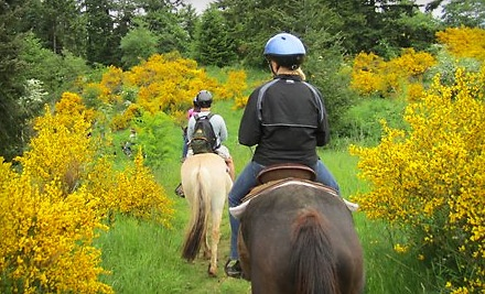 Morris's Shadow Mountain Stables: 90-Minute Trail Ride - Morris's Shadow Mountain Stables in Auburn