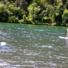 Up to 61% Off Stand-Up Paddleboard Rentals