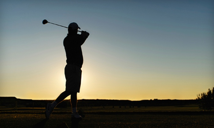 Triggs Memorial Golf Course - Mount Pleasant: $99 for Two 60-Minute Video Swing-Analysis Sessions at Triggs Memorial Golf Course ($200 Value)