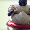 Half Off Sumo-Wrestling Party