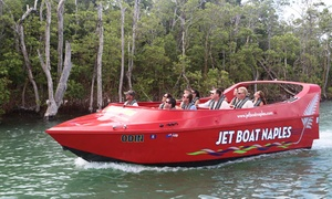 Pure Naples: $25 for a 60-Minute Jet-Boat Ride from Pure Naples (Up to $45 Value)