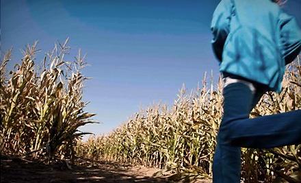 Beck's Harvest House - Beck's Harvest House in Colbert