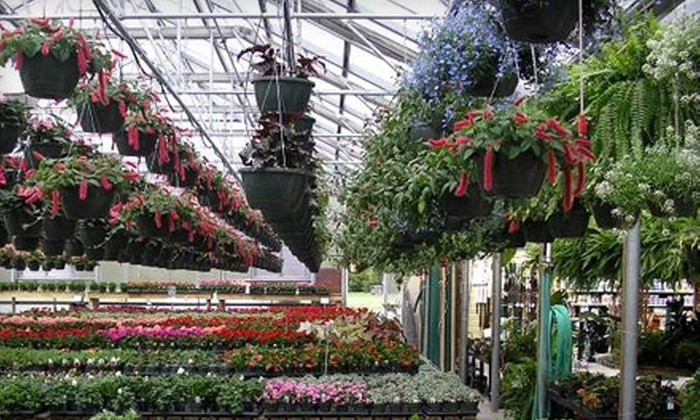Ashwood Gardens & Nursery - Beaverdam: $15 for $30 Worth of Flowers and More at Ashwood Gardens & Nursery in Ashland