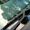 Up to 56% Off Windshield Repair or Replacement