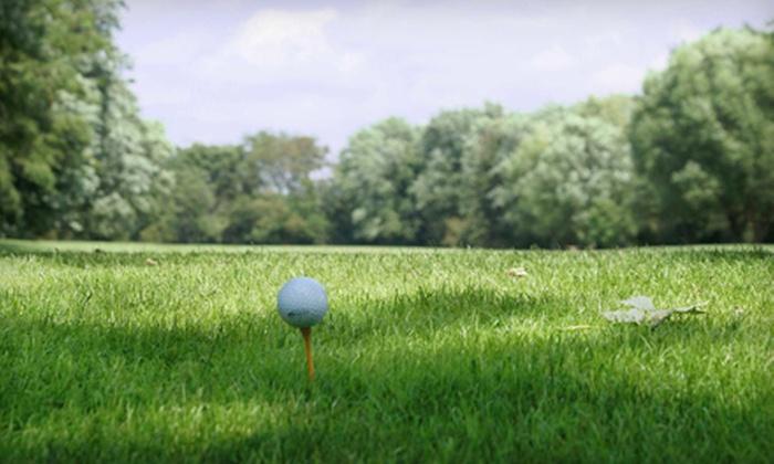Willow Run Golf Course - Mokena: $26 for a Golf Outing for Two at Willow Run Golf Course in Mokena ($59.50 Value)