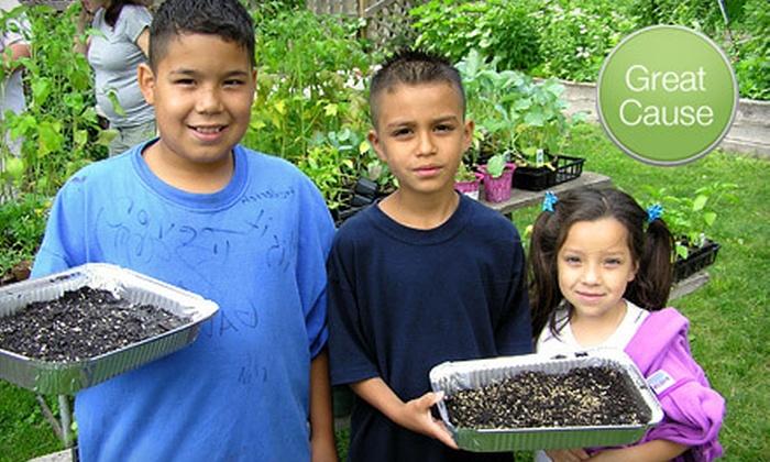 American Community Garden Association - Amarillo: If 50 People Donate $10, Then American Community Gardening Association Can Distribute Garden Mosaics Kits to 10 Schools or Community Gardens