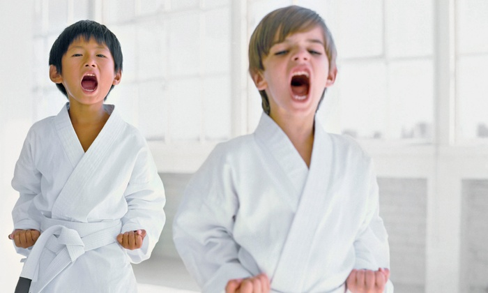 Chicago Mixed Martial Arts - Goose Island: One or Three Months of Martial Arts-Classes for Kids Aged 6–10 or 11–15 at Chicago Mixed Martial Arts (Up to 75% Off)