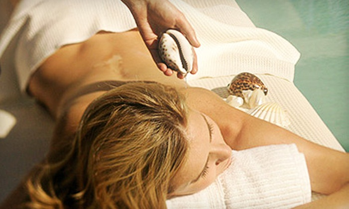 Pure Blu Spa - Newport Center: $15 for One-Day Guest Membership to Pure Blu Spa in Newport Beach (Up to $40 Value)