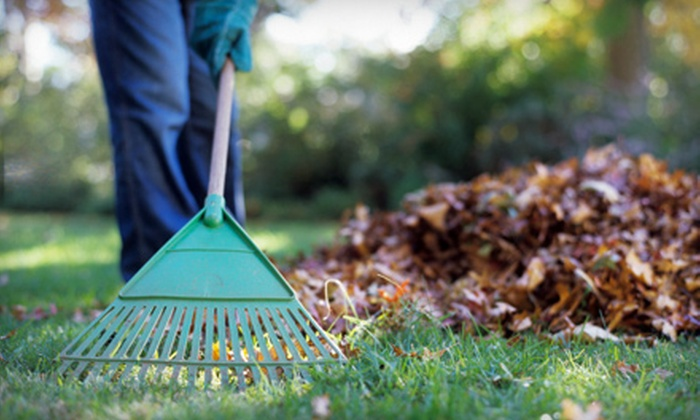 Helping Hand - Downtown: Yard-Cleanup Packages from Helping Hand (Up to 61% Off). Two Options Available