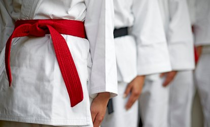 Four <strong>Martial Arts</strong> Classes or Month of <strong>Martial Arts</strong> Classes at Intensity <strong>Martial Arts</strong> (Up to 63% Off)
