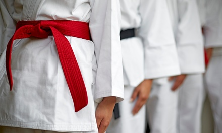 One-Month Karate Classes for One ($10) or Two People ($19) at Golden Knights Martial Arts, 15 Locations (Up to $160)