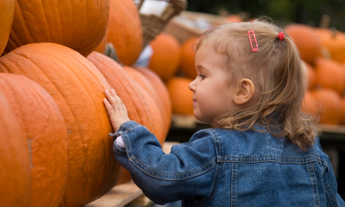 Pumpkin Village Pumpkin Patch - Flower Mound: Fall-Themed Games, Children's Rides, and Hayrides for 1, 2, or 4 at Pumpkin Village Pumpkin Patch (Up to 56% Off)