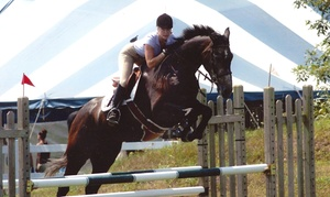 Summit Farm: One or Two 30-Minute Horseback-Riding Lessons at Summit Farm in North Salem (69%)
