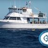 51% Off Scuba Diving Cruise