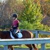 Half Off Riding Lessons at Havencrest in Oakville