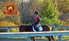 Havencrest Riding Academy Inc. - Oakville: $59 for Two Private Lessons at Havencrest Riding Academy Inc. in Oakville ($118.65 Value)