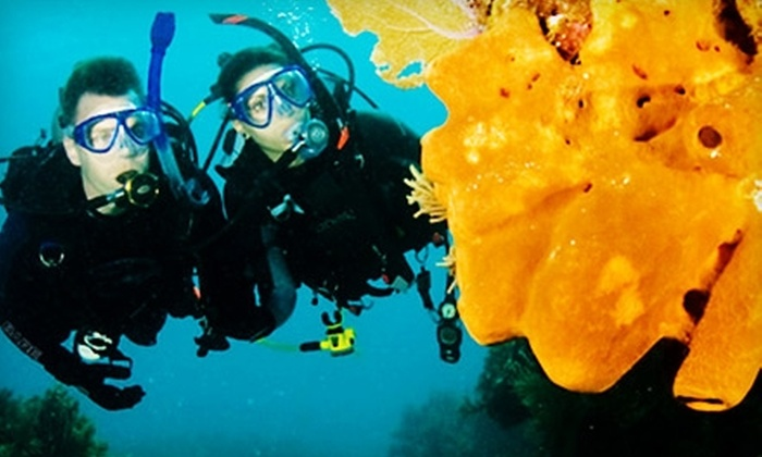 Divers Direct - Fort Lauderdale: $10 for a Try Scuba Experience from Divers Direct in Dania Beach ($25 Value)