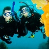$10 for Scuba Lesson in Dania Beach