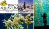 Birch Aquarium - San Diego: $6 for Adult Admission to Birch Aquarium at Scripps ($12 Value)