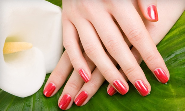 Amoré Salon and Spa - Portland: One, Two, or Three Shellac Manicures at Amoré Salon and Spa (Half Off)