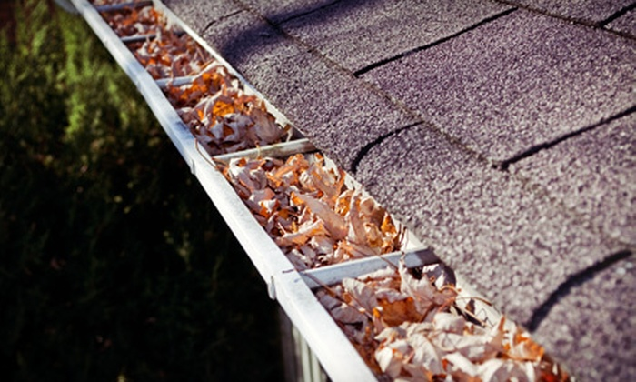 Miller Pro Painting - Downtown Akron: $69 for Gutter Cleaning on Any House Level from Millers Pro Painting ($175 Value)