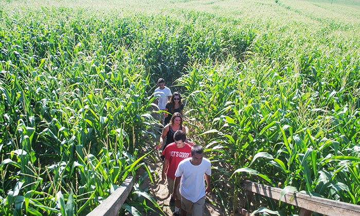 Lake View Farms - Northwest Hillsboro: $8 for Corn Maze Admission for Two, with Two Popcorns and Two Cold Drinks (Up to $15 Value)