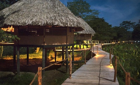 Thatch-Roof Cabanas in Belize Jungle