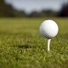 Half Off Golf Coupon Card