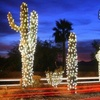 Half Off at The Festival of Lights in Ahwatukee