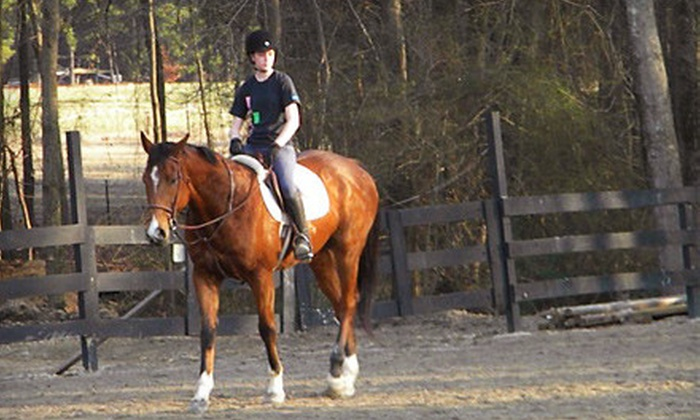 Dreamwood Farm - Marks Creek: Two or Four 30-Minute Private Horseback-Riding Lessons at Dreamwood Farm in Wendell (Up to 59% Off)