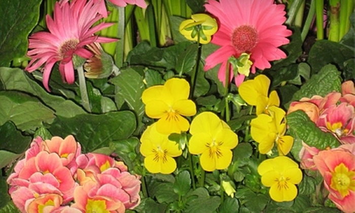 Boise Flower & Garden Show  - Downtown: $7 for Two Adult Tickets to the Boise Flower & Garden Show (Up to $14 Value)