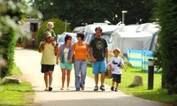 Cornwall: 1 to 3 or 7 Night Camping Pitch Stay With Electricity For Up to 4 at Monkey Tree Holiday Park