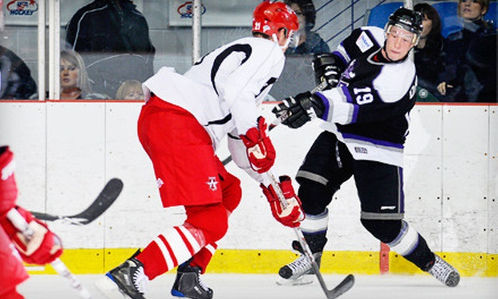 Texas Brahmas - North Richland Hills: Terrace- or Plaza-Level Seats for Two to Texas Brahmas Hockey Game in North Richland Hills (Half Off)