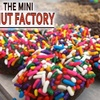 $5 for Donuts at The Mini Donut Factory