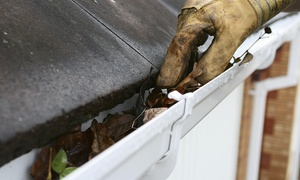Two Nice Guys: Complete Gutter Cleaning for a House Up to 1,800 or 2,500 Square Feet from Two Nice Guys (Up to 62% Off)