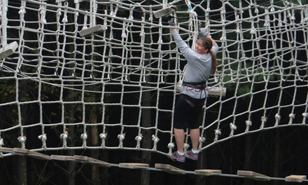 Four Hours of Open-Play Rope Courses for One, Two, or Four at Summit Vision (Up to 57% Off)